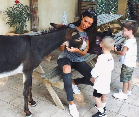 Mammal, Horse, Okapi, Livestock, Burro, Fawn, Child, Horse trainer,