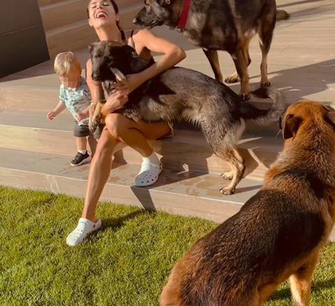 pilar rubio cepillando a sus perros