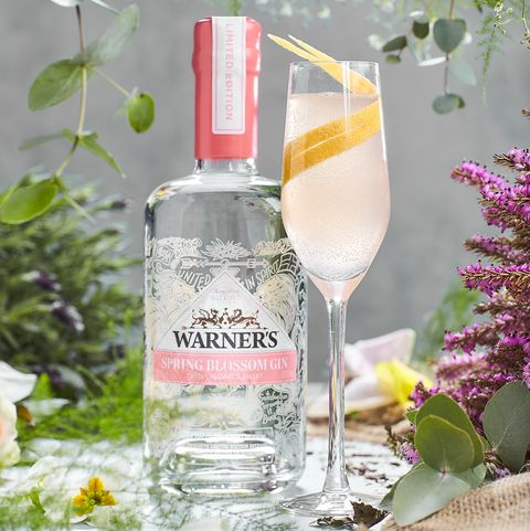 warners spring blossom gin