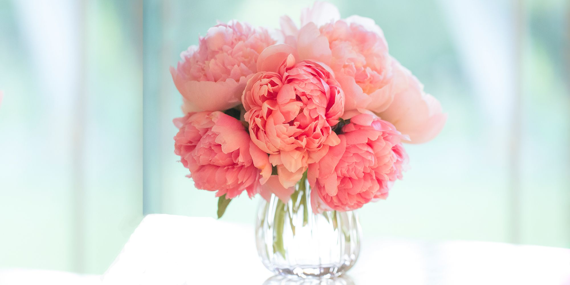 12 Best Flowers for Valentines Day - Popular Roses
