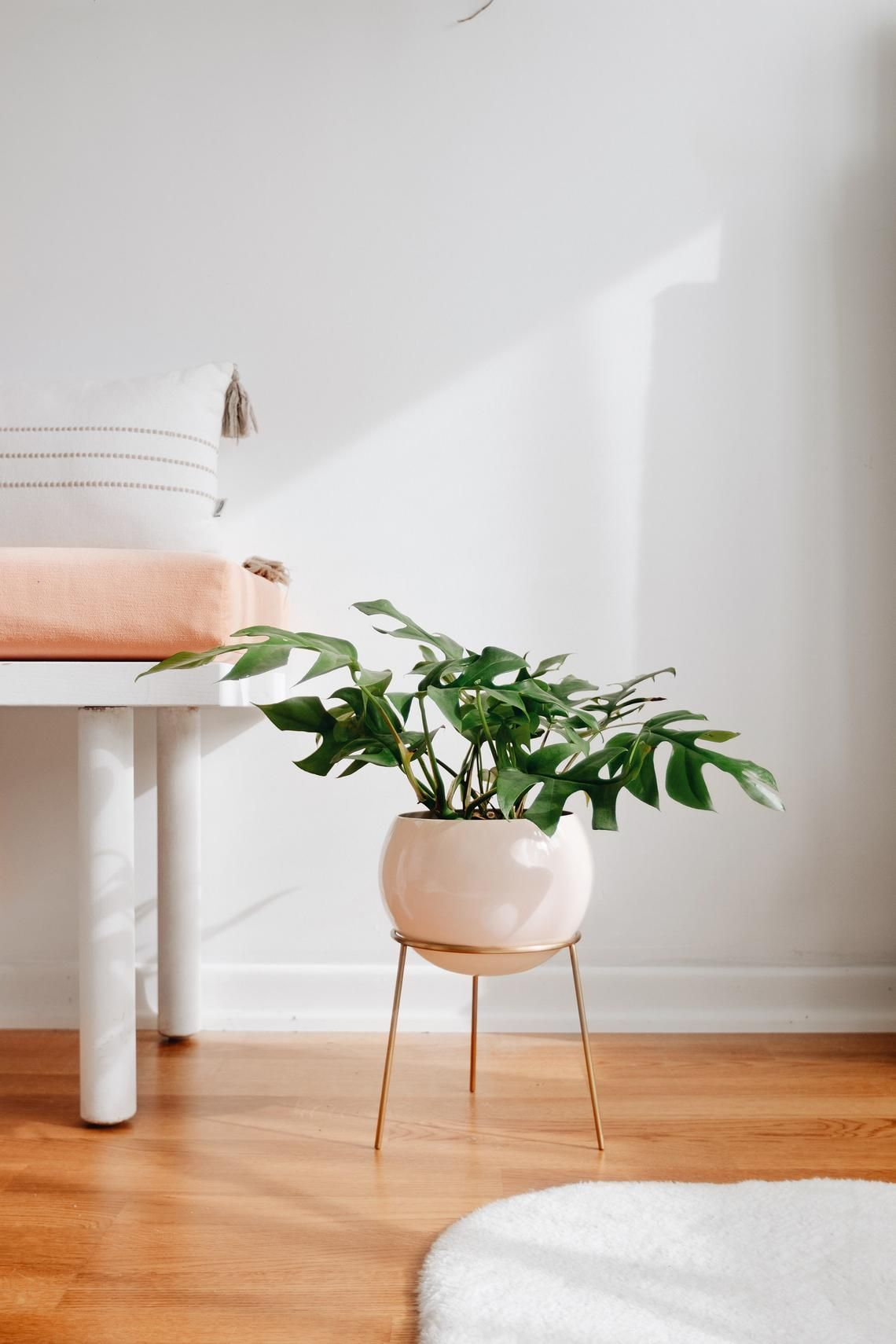 30 Best Indoor Plant Stands For Displaying Your Plants In 2021
