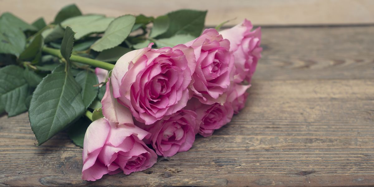 16 Romantic Flower Meanings - Symbolism of Different Kinds ...