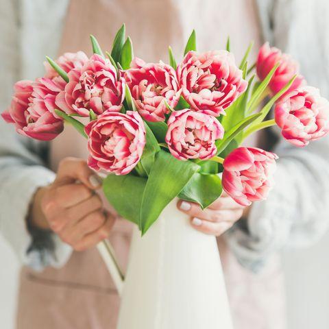 Tulipanes rosas frescos en jarrón de esmalte blanco