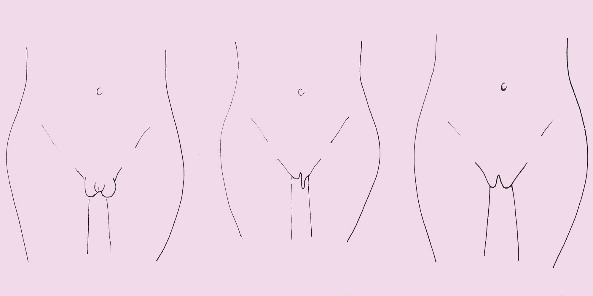 Normal female vagina illustrations