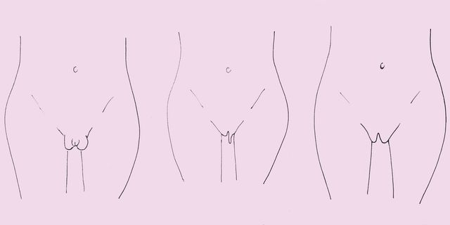 Is My Vagina Normal Here Are The 7 Different Types Of Labia