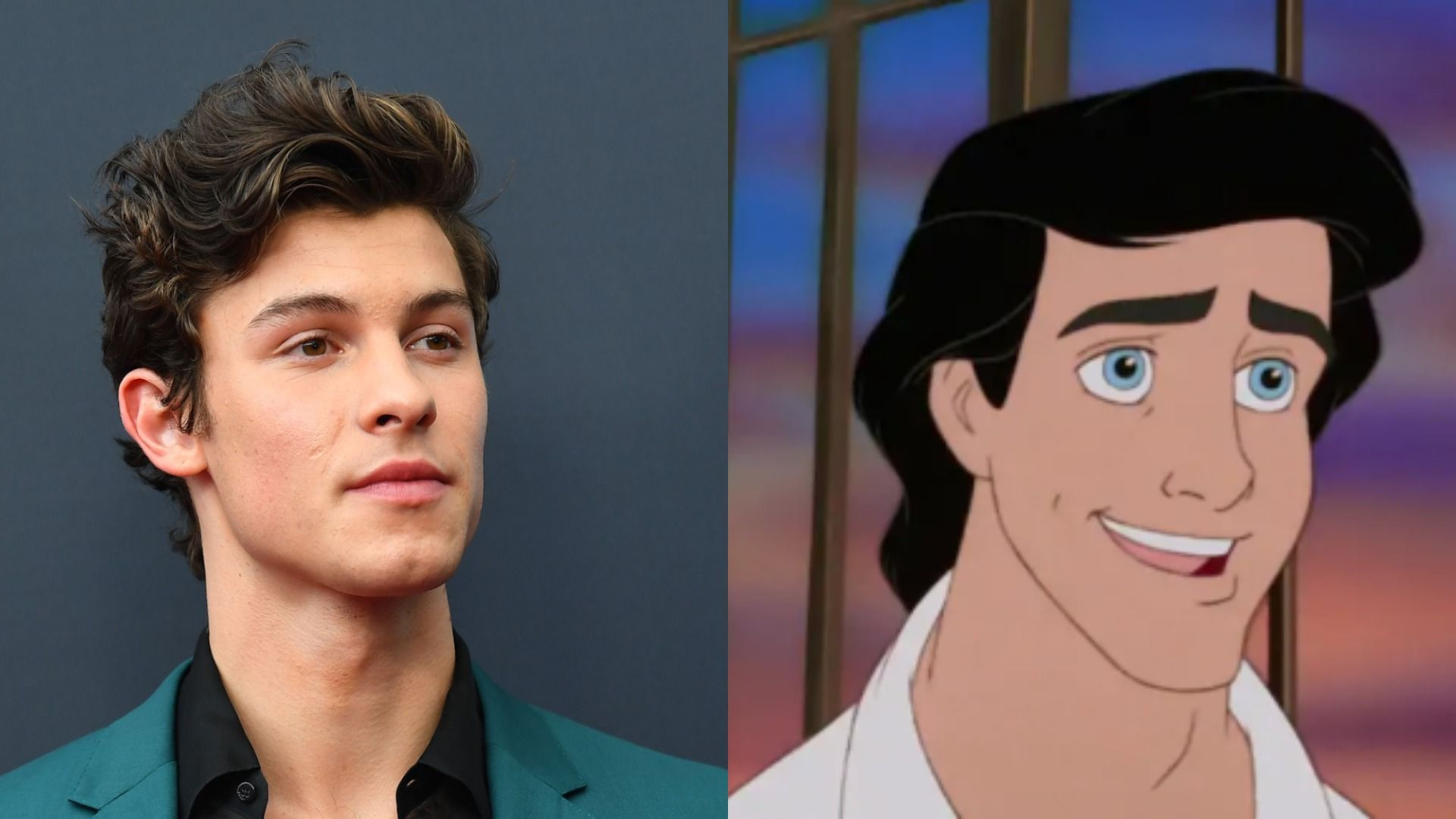 Fans Want Shawn Mendes To Play Prince Eric In Live Action Little