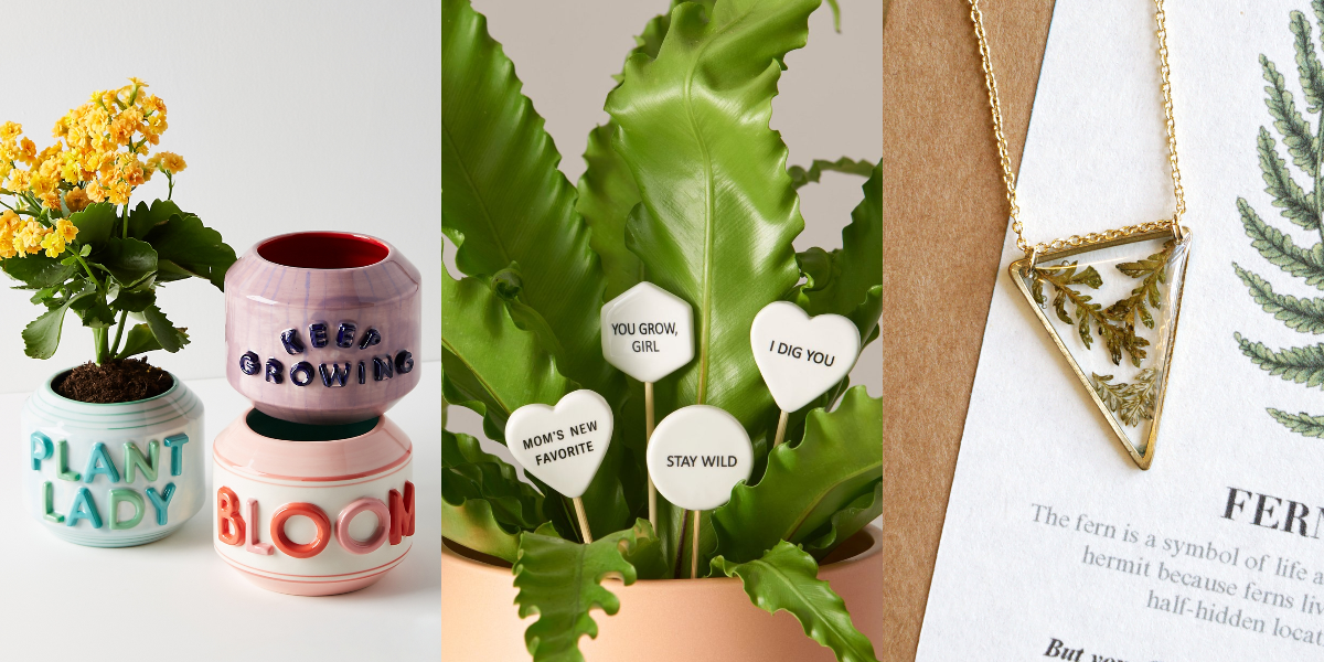 20+ Holiday Gifts Any Plant Lover Will Be Obsessed With