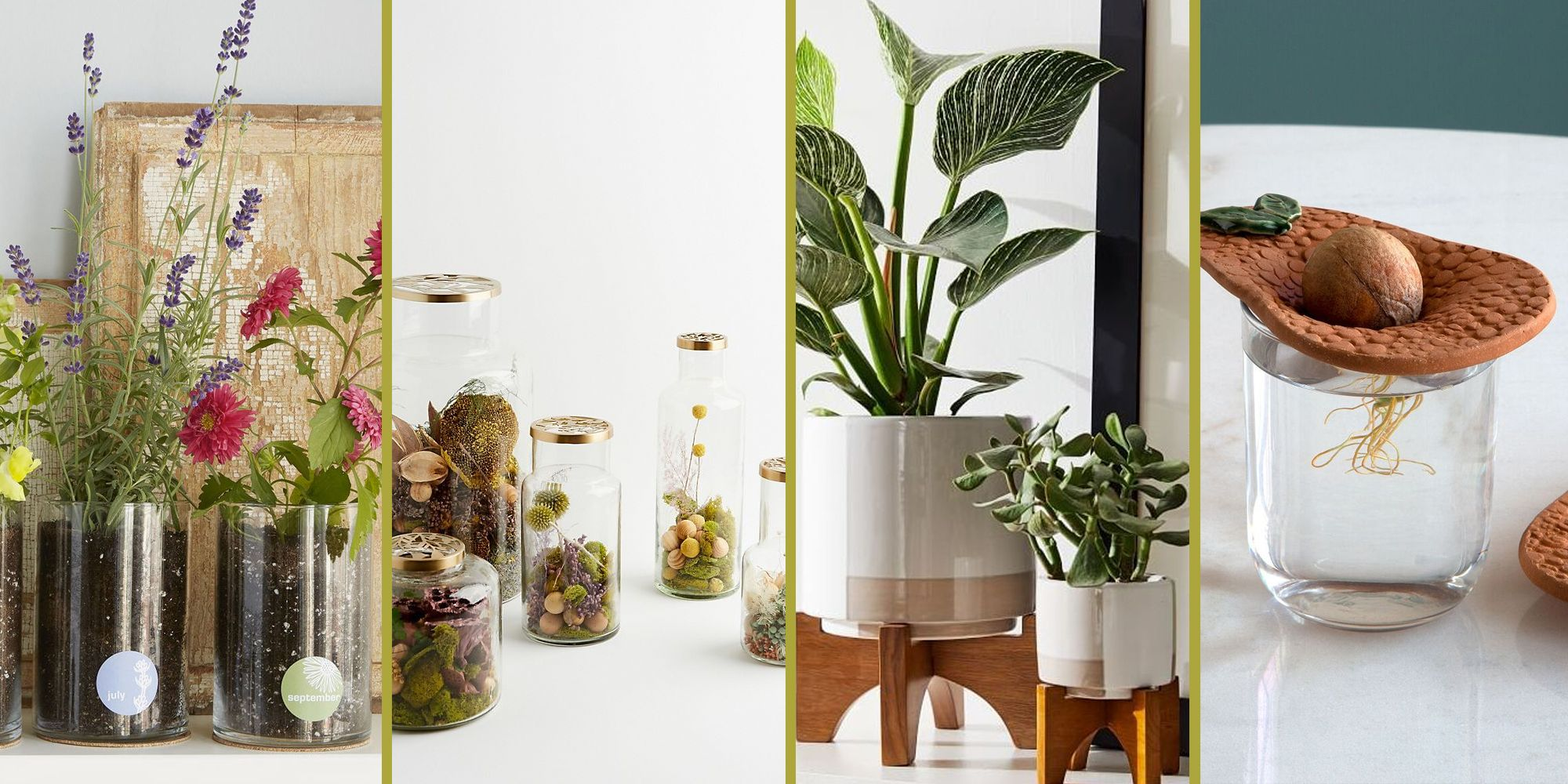 40 Best Gifts for Plant Lovers - Cute Plant Gift Ideas 2021