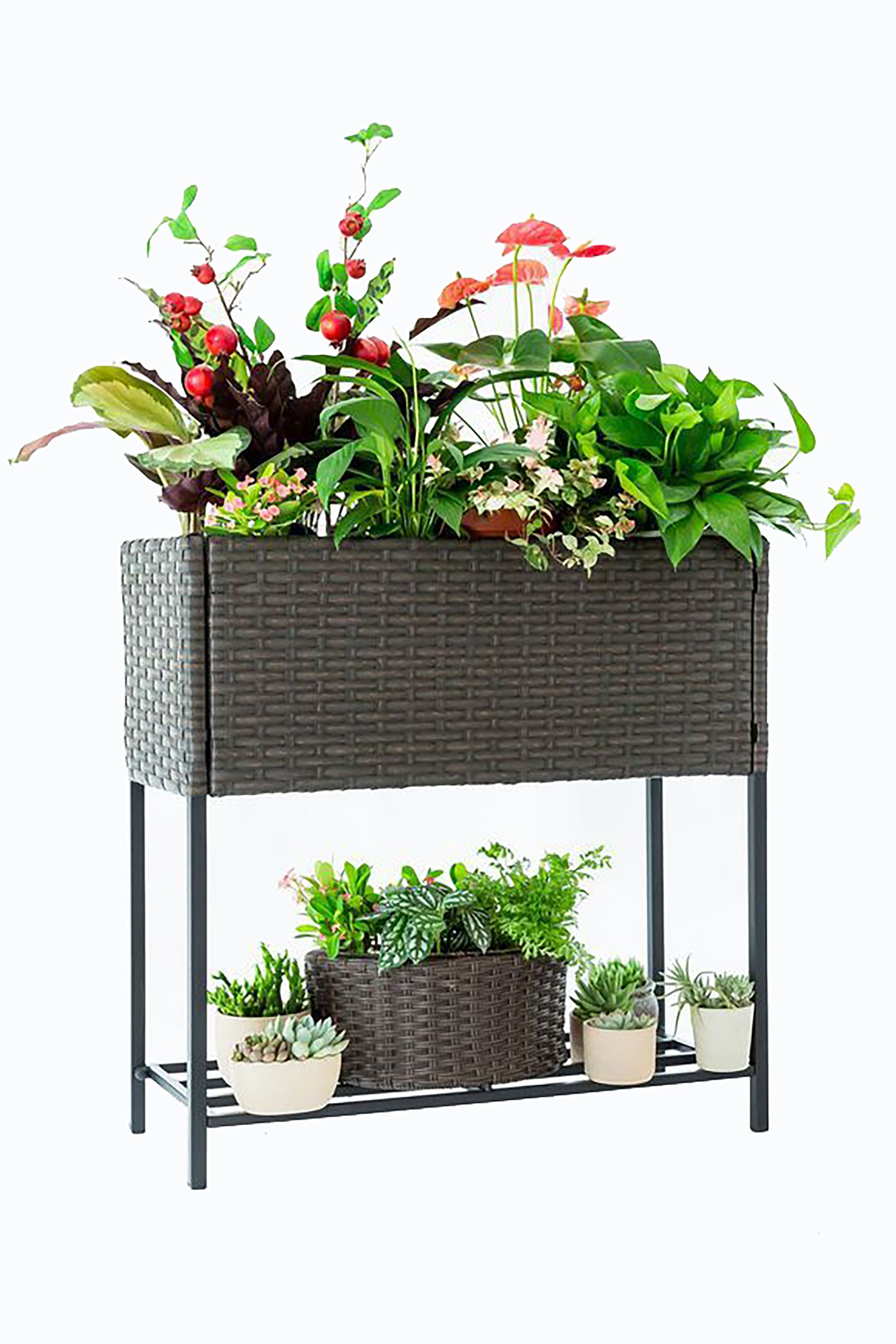 plant holder stand