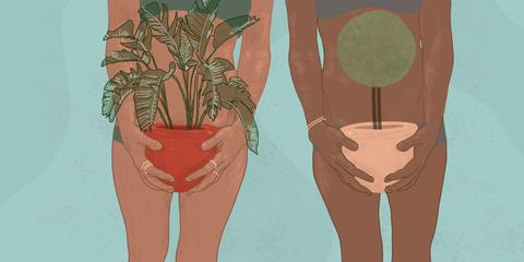 Leg, Illustration, Joint, Tree, Thigh, Art, Knee, Human body, Footwear, Plant,