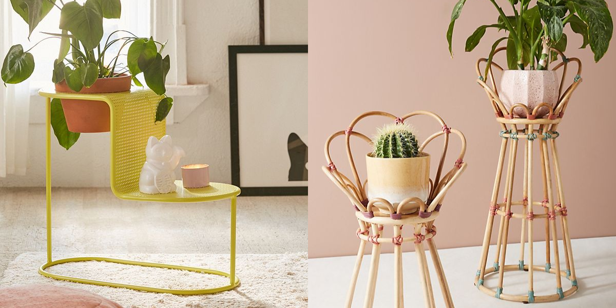 Plant Stands For Displaying Your Plants