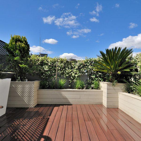 plantas de ocultación  en la terraza ático