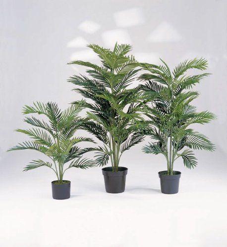 ¿Comprarías plantas online? En estas webs de tiendas online sí