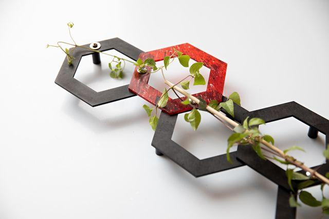 sustainable goed van pas plantenrekje asn bank