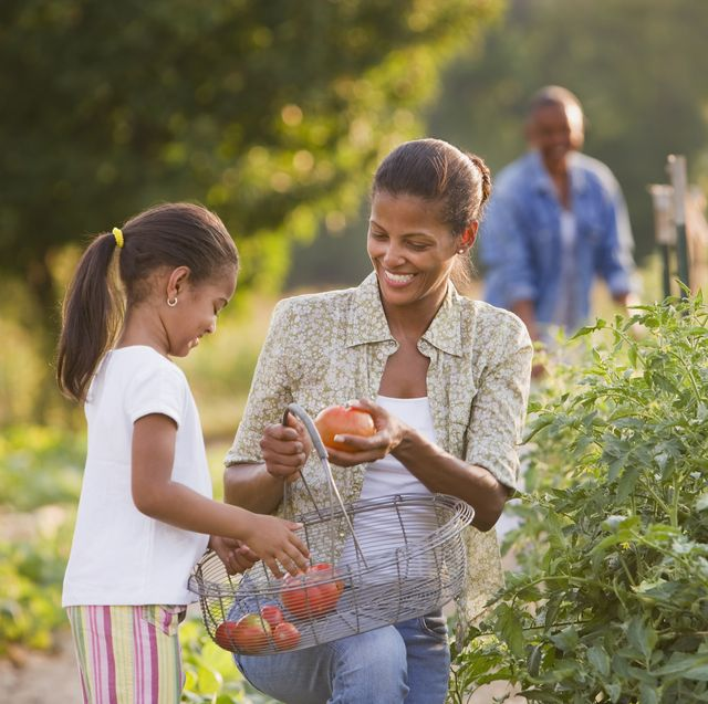 best plants for kids tomatoes