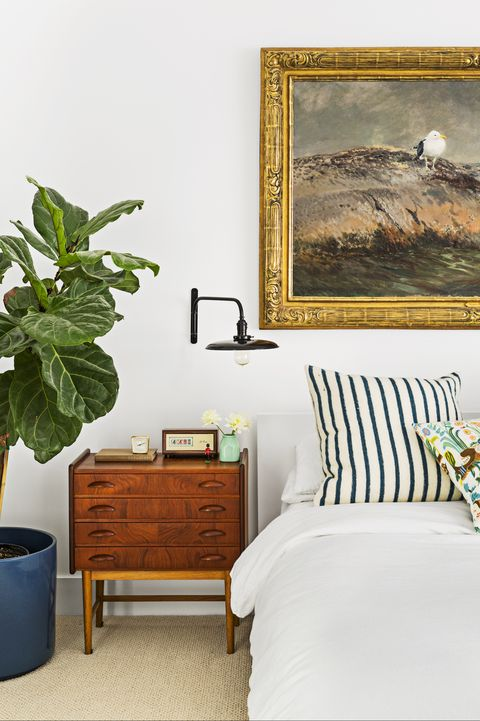 guest bedroom with fiddle leaf fig