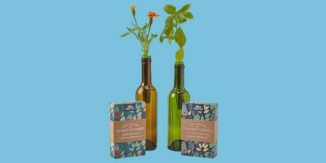 herbs and flowers growing out of wine bottles