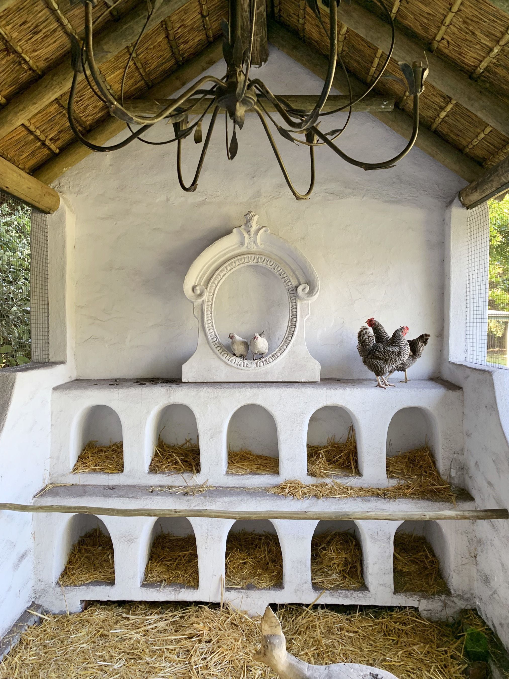 48 Diy Chicken Coops How To Build A Chicken Coop