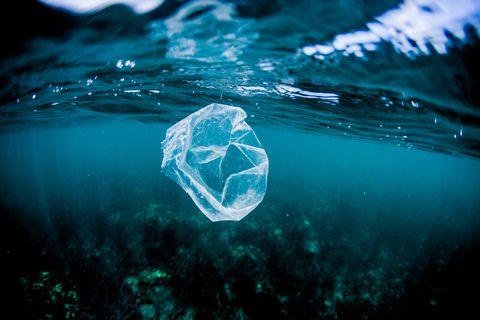 Plastic bag floating over reef in the ocean, Costa Rica