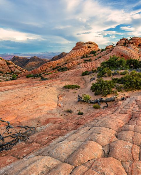 Plateau Yant Flat - Candy Cliffs, Utah