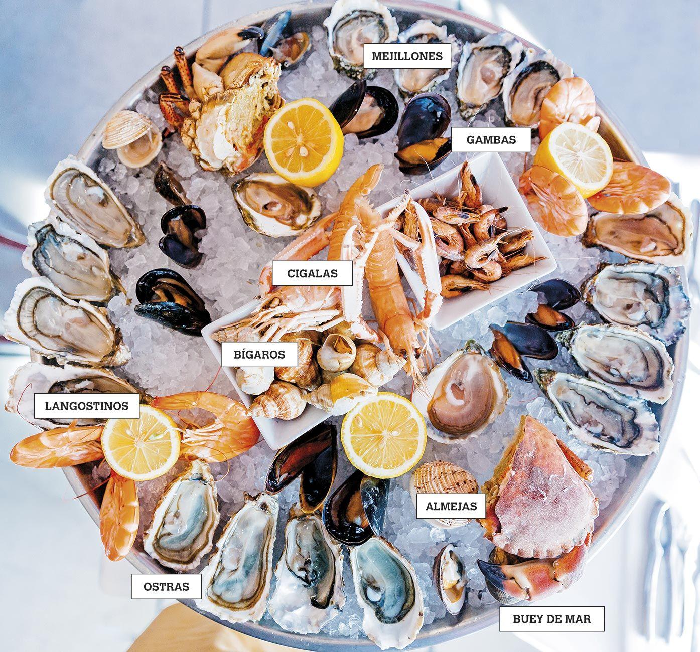 Mariscos, variedades y recetas - Alimentos