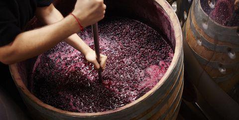 tannine-wijn