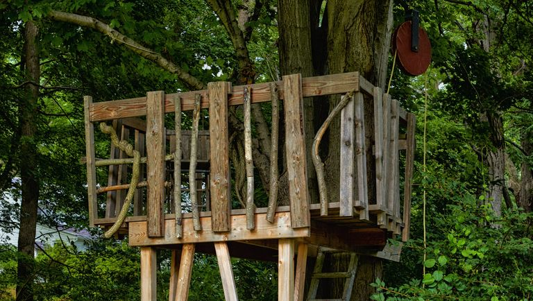 How to build a treehouse for your backyard diy tree for Three tree treehouse plans