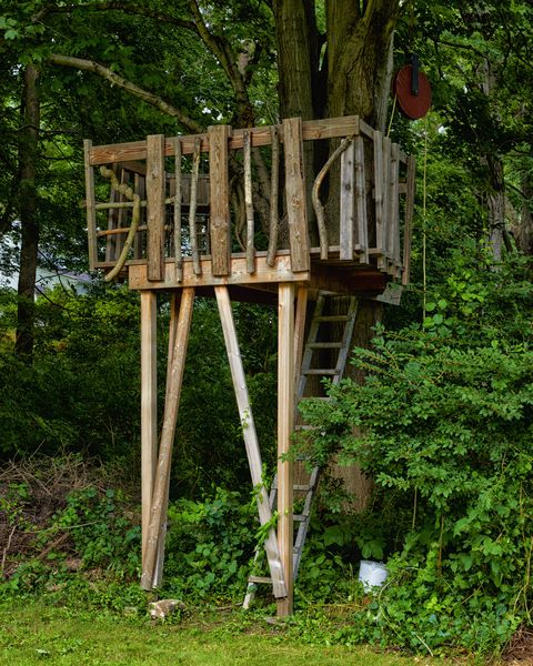 Design Your Own Treehouse