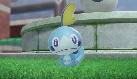 Pokemon Sword and Shield, Sobble
