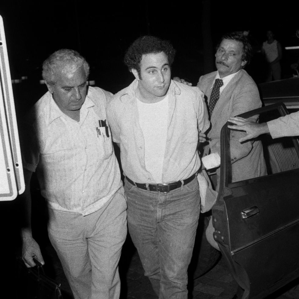 'Mindhunter' Featured the True Story of 'Son of Sam' Killer David Berkowitz. Here's What You Need to Know.