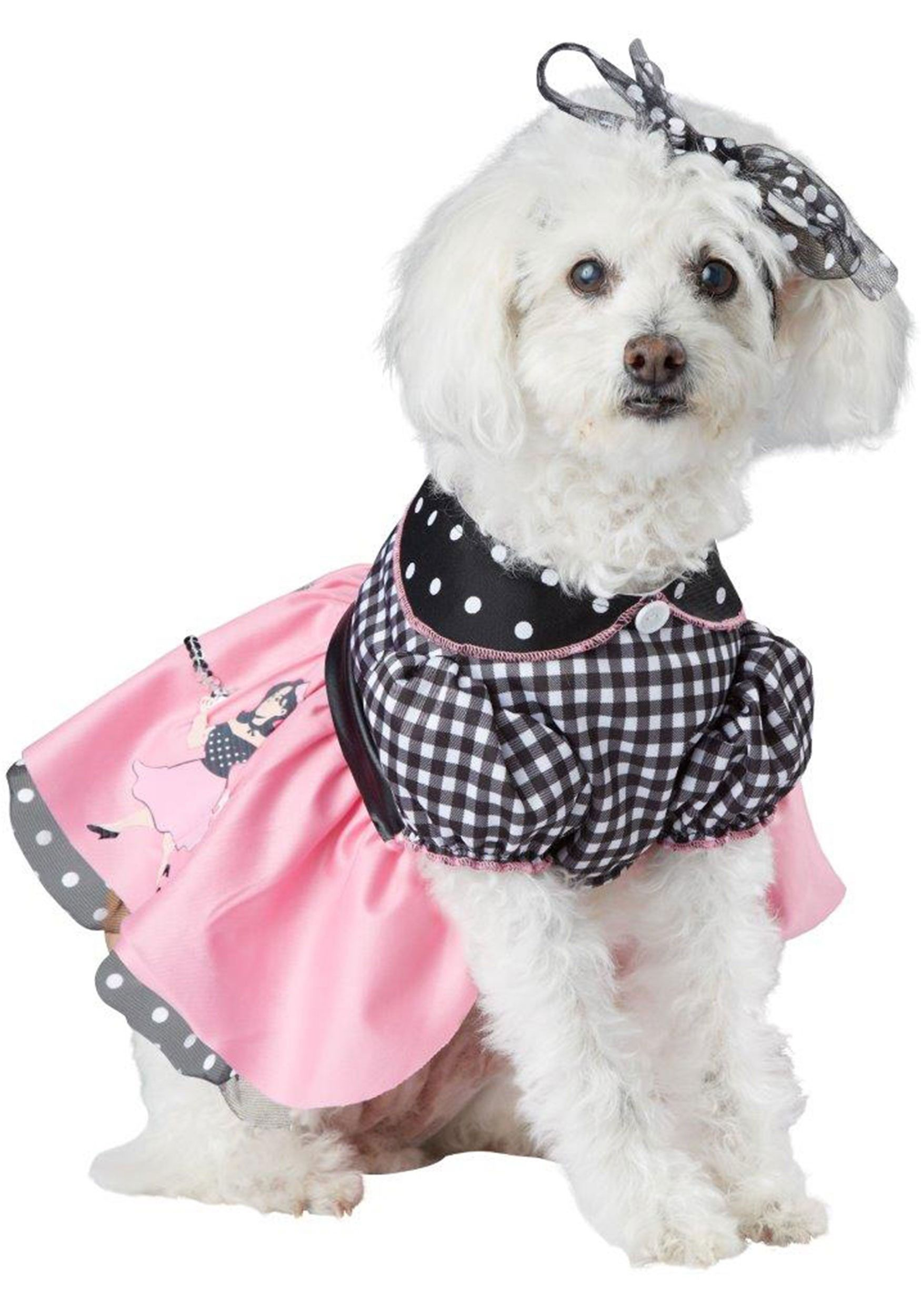 poodle skirt costume for dogs  sc 1 st  Country Living Magazine & 30 Cute Pet Costumes for Dogs u0026 Cats - Best Halloween Pet Costume Ideas