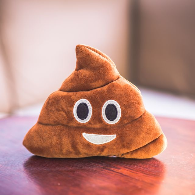 poop emoji pillow, funny concept, fluffy plush toy