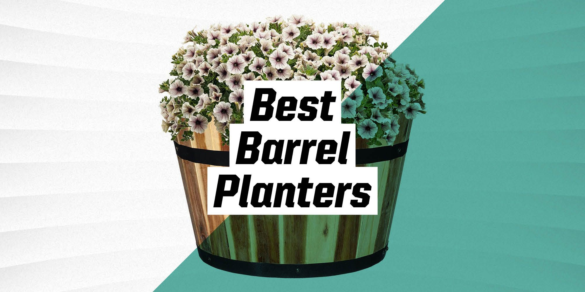 The 9 Best Barrel Planters for Your Outdoor Space
