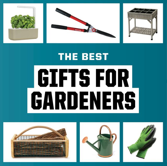 gadgets and tools for gardening