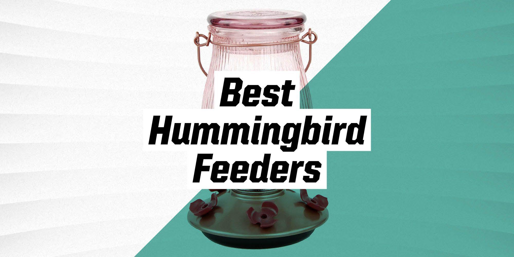 10 Best Hummingbird Feeders to Create a Mini Paradise