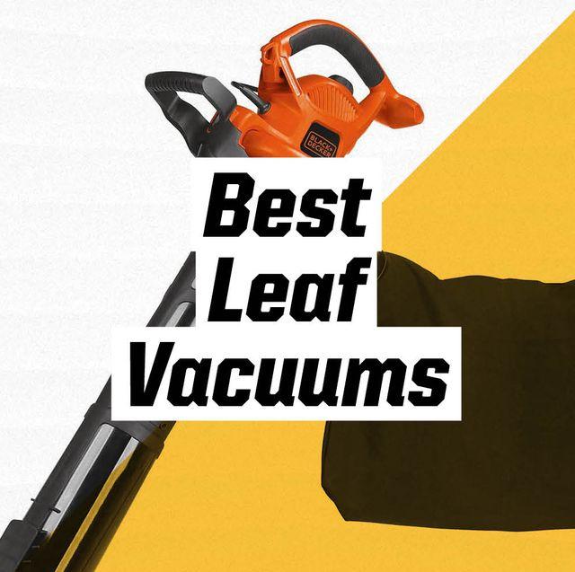 best leaf vacuums