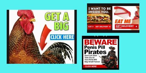 Vertebrate, Beak, Phasianidae, Bird, Galliformes, Fowl, Adaptation, Advertising, Comb, Poultry,