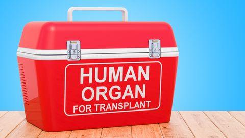 menselijk orgaan in kist