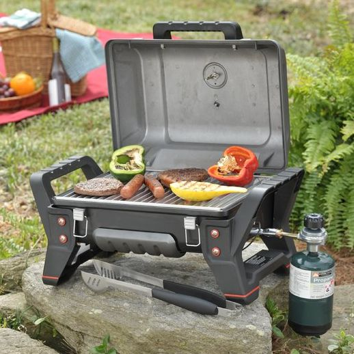 Barbecue, Outdoor grill, Barbecue grill, Picnic, Outdoor grill rack & topper, Cooking, Kitchen appliance, Cookware and bakeware, Portable stove, Kitchen appliance accessory,