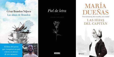 Book cover, Text, Book, Publication, Graphic design, Font, Poster, Fiction, Novel, Movie,