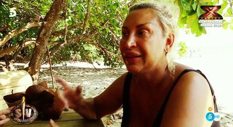 Jungle, Adaptation, Fun, Tree, Vacation, Leisure,