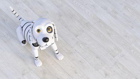 Portrait of robot dog sitting on wooden floor, 3d rendering
