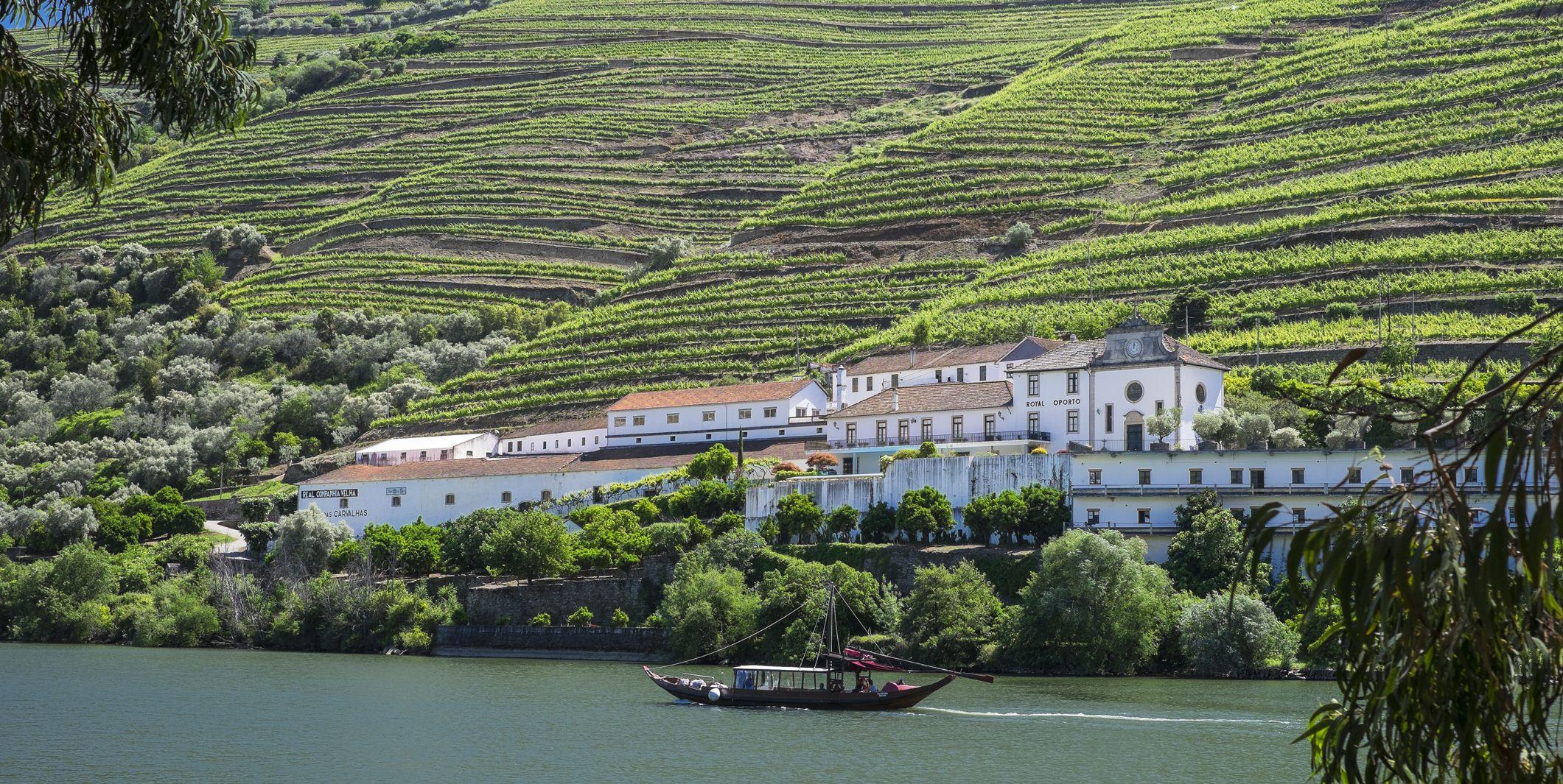 Wine tours around the world: Douro Valley