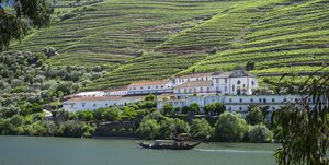 Wine tours around the world: Douro Valley