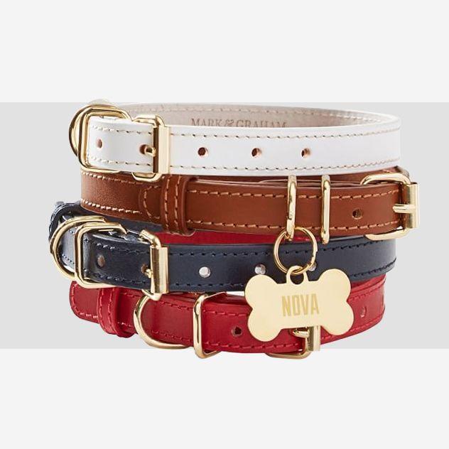 preppy dog collars