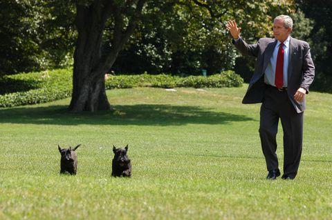 president bush returns to the white house