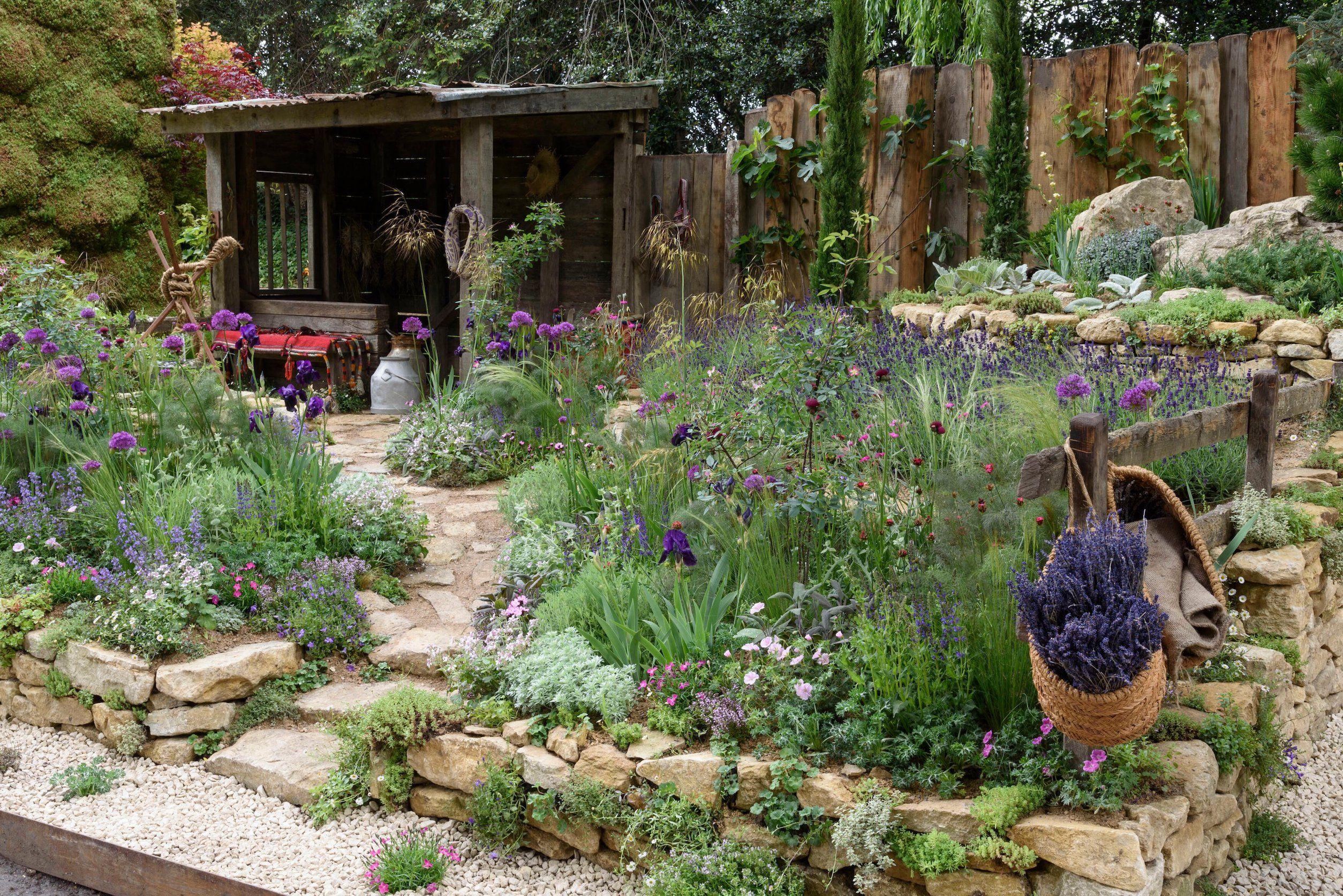 winning chelsea flower show 2019 gardens: all 28 gardens in photos