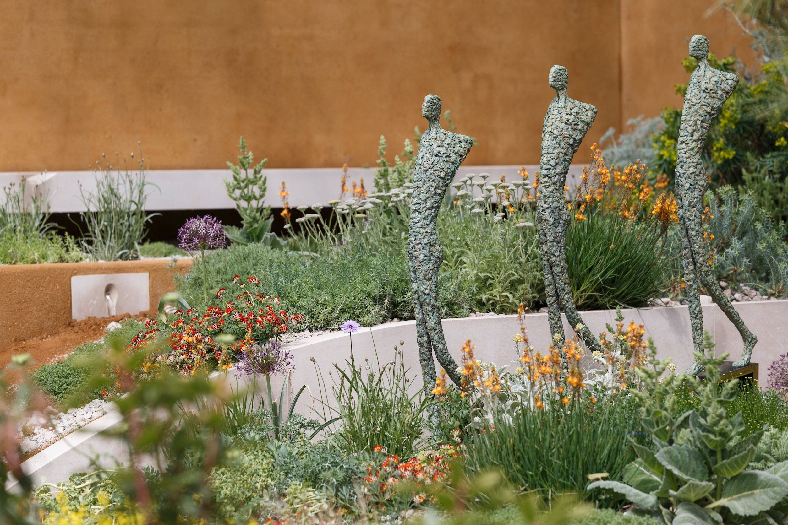 What happens to the Chelsea Flower Show gardens once the show is over?