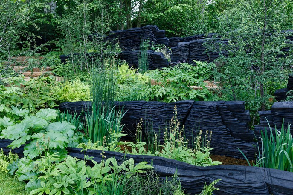 Chelsea Flower Show 2019: Andy Sturgeon's M&G Garden wins Best in Show