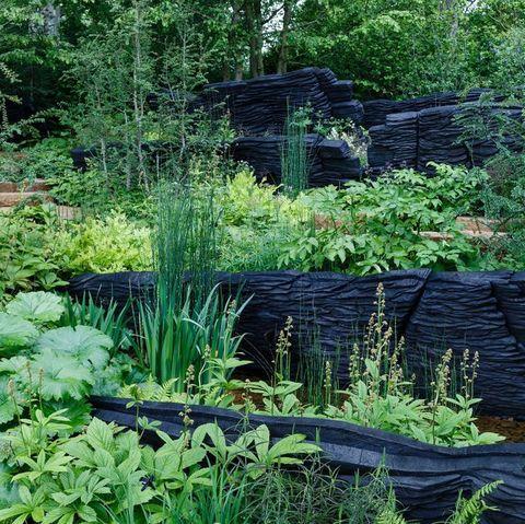 Chelsea Flower Show 2019 - Show Gardens